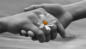 Le-più-belle-ed-emozionanti-frasi-sullamicizia-e-da-dedicare-al-migliore-amico-1